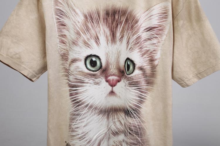 超级可爱的萌猫